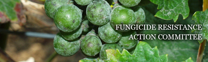 FRAC - Fungicide Resistance Action Commitee